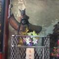 台南 東嶽殿( 仁聖大帝 )-馬將軍照片