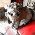 台南 崇福宮-石獅照片